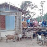 Recent recipients of goats for milk and breeding